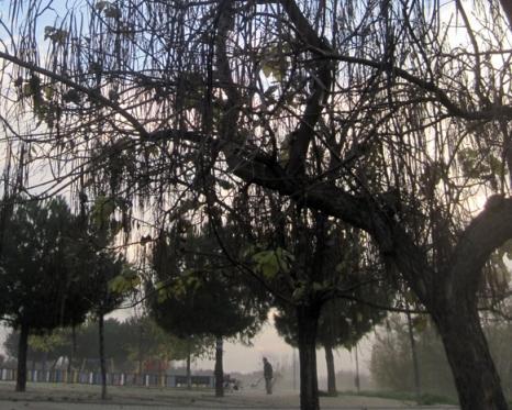 Invierno 9