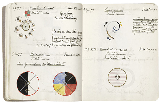 Hilma af Klint From A Work on Flowers, Mosses and Lichen, July 2 1919  © Stiftelsen Hilma af Klints Verk