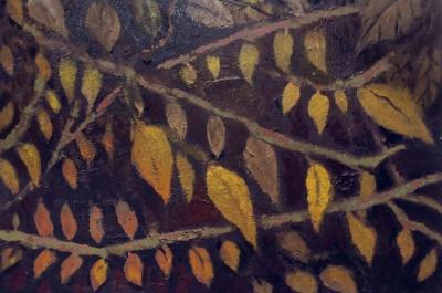 Hojas en otoño.b