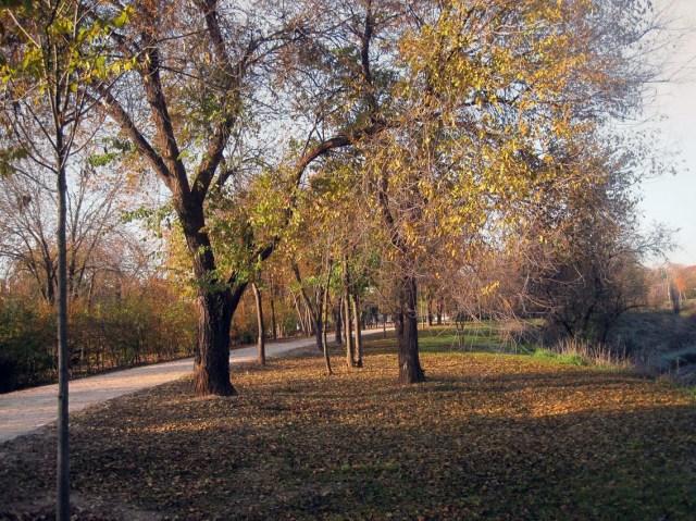 parque.5.b