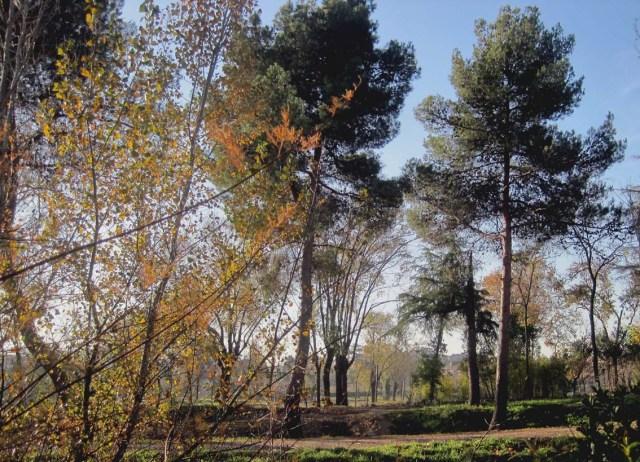 parque.7.b