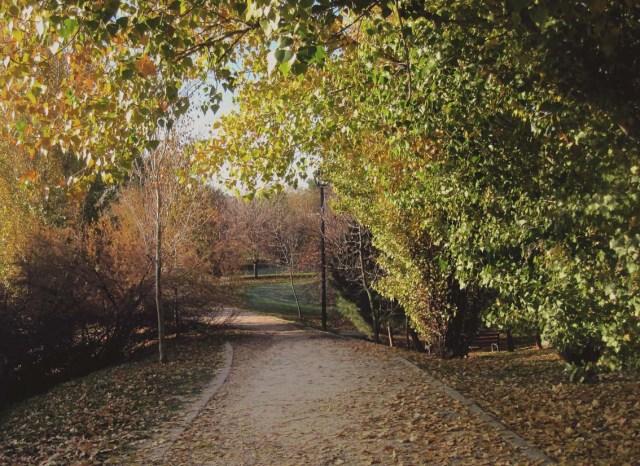 parque.8.b